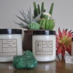Cactus Flower and Jade Lifestyle